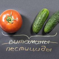 Тест огурцов и помидоров