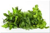 Тест: свежая зелень (петрушка, укроп, кинза)